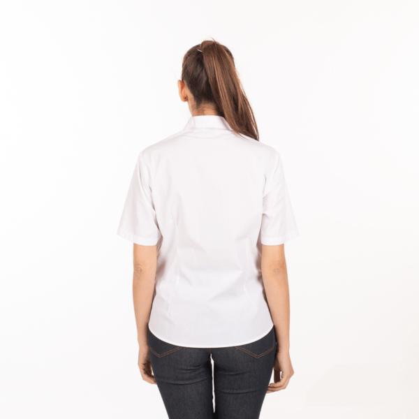 camicia-bianca-donna-ristorante-maniche-corte-vendita