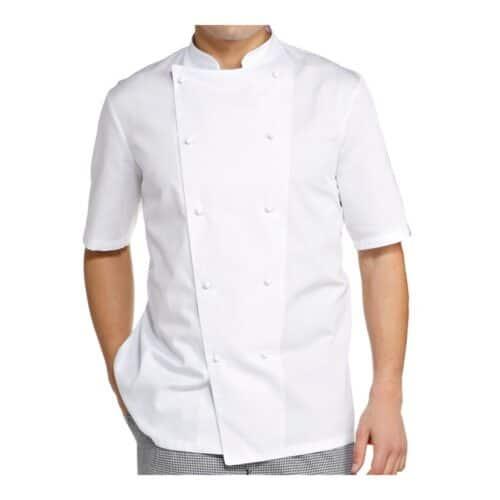Antonio giacca cuoco manica corta